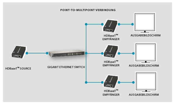 Point-to-Multipoint-Verbindung